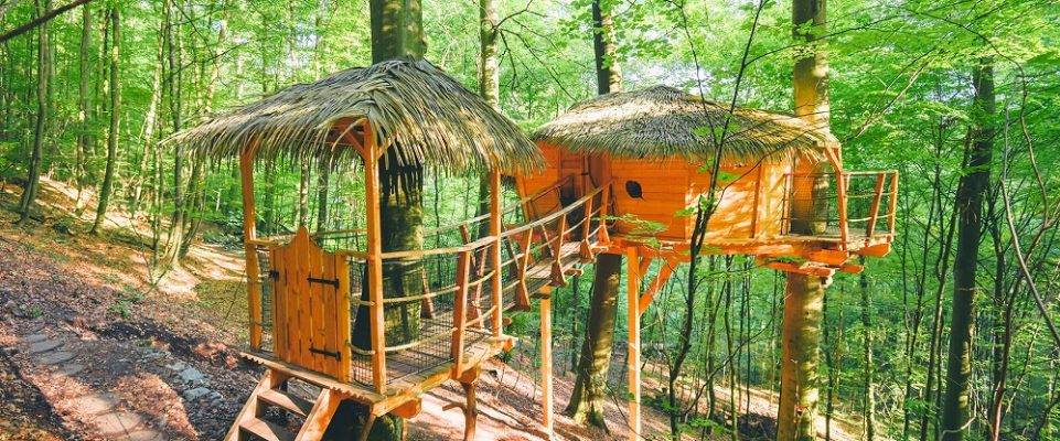 treehouse-sk-1