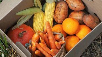 3 Svet bedniciek- ovocie-a-zelenina-od-farmarov