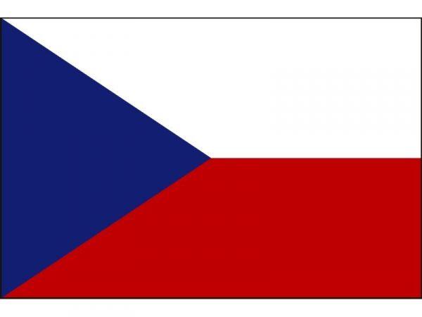Českú verziu knihy nájdete kliknutím na vlajku
