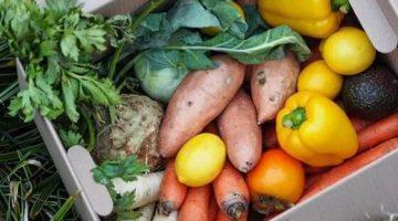 1 Svet bedniciek- ovocie-a-zelenina-od-farmarov