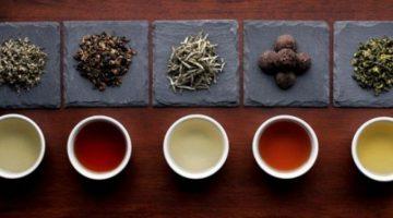 tea_tasting-1280x720